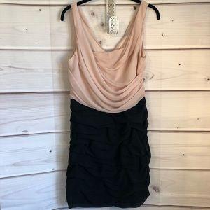 Express blush sheer dress
